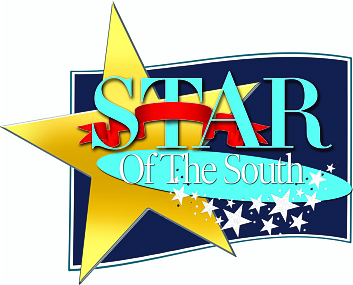 Star of the South Award- Best Web Design Company